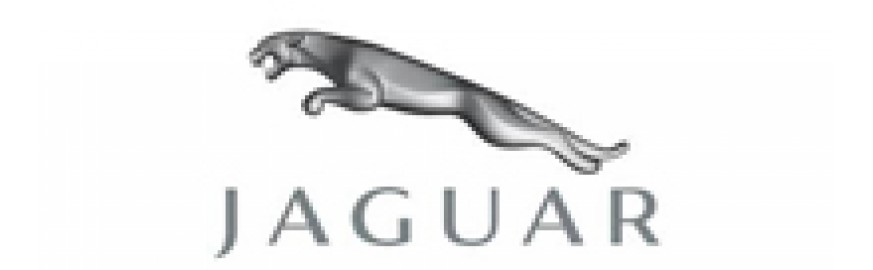 Jaguar (0)