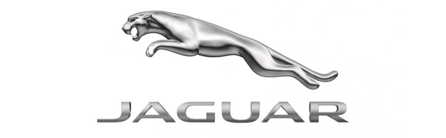 Jaguar (1)